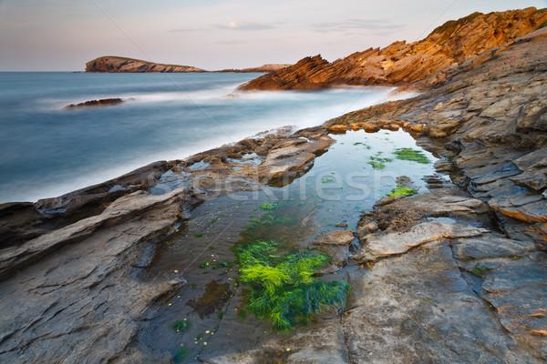 Yeşil plaj su okyanus kaya taş Stok fotoğraf © broker