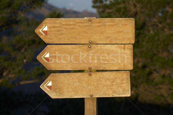 wood billboard blank, just add your text Stock photo © broker