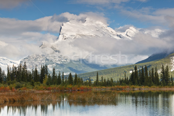 Foto stock: Lago · Canadá · parque · água · neve · árvores