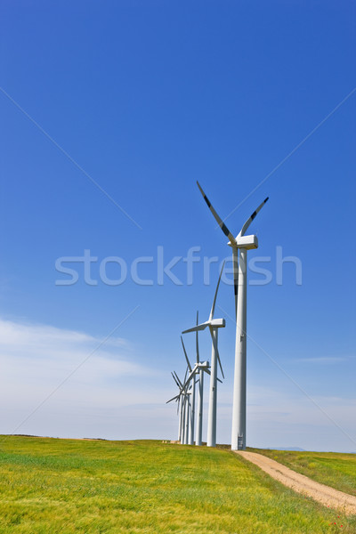 Vento energia fazenda verde campo Foto stock © broker
