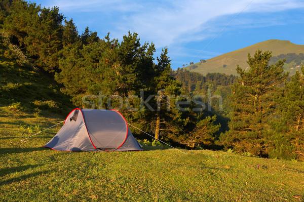Sátor zöld legelő hegyek fa erdő Stock fotó © broker