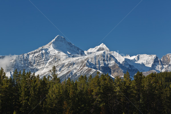 Snowcapped Canadian Rockies Stock photo © broker