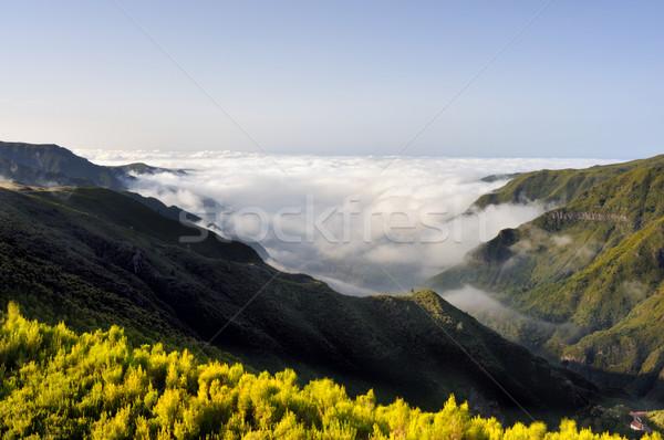 Stockfoto: Vallei · plateau · natuurlijke · madeira · eiland · Portugal