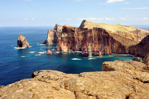 East  coast of Madeira island  Stock photo © brozova