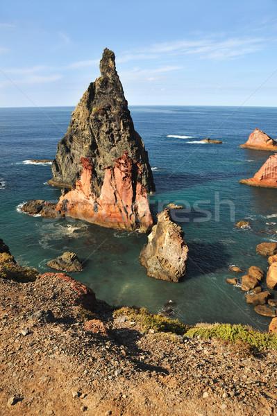 Sahil madeira ada manzara deniz okyanus Stok fotoğraf © brozova