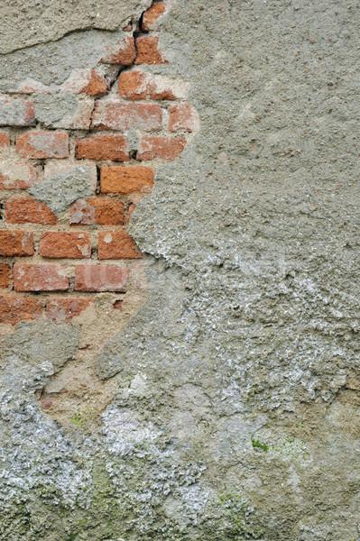 Old wall -  background Stock photo © brozova