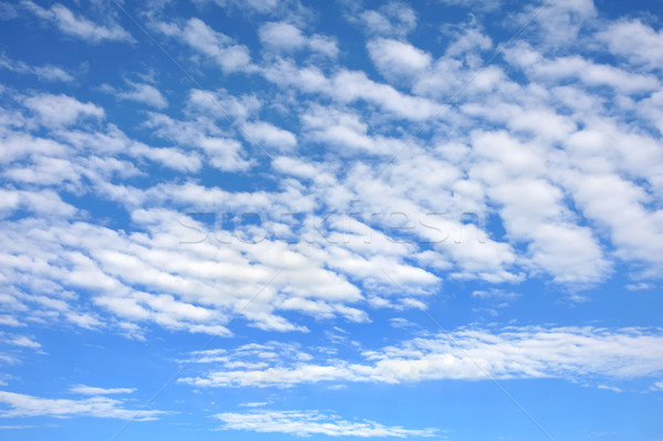 Cloudscape  - only sky and clouds Stock photo © brozova