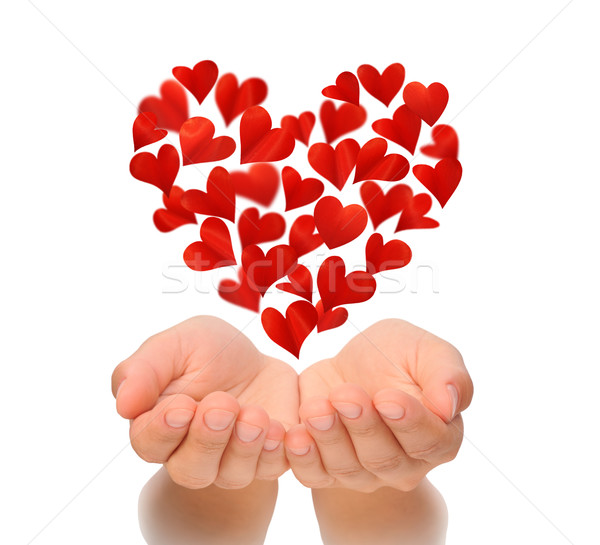 Hearts in heart shape flying over cupped hands of young woman, Valentine's Day, birthday card Stock photo © brozova