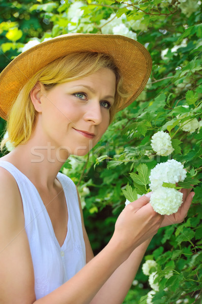 Young woman gardening - taking care of snowball Stock photo © brozova