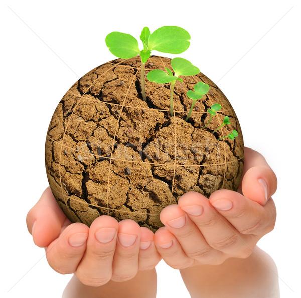 Bitki büyüyen dışarı gezegen eller evrim Stok fotoğraf © brozova