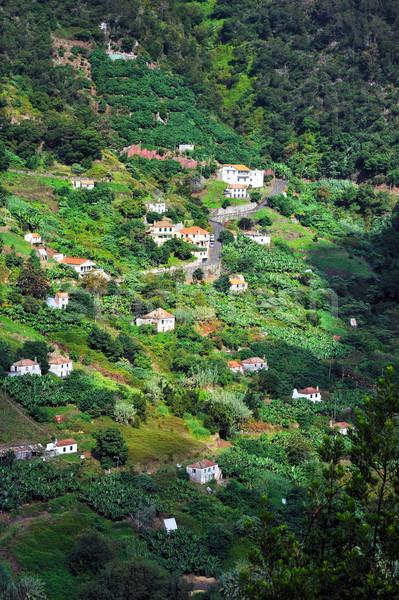 Falu észak part Madeira sziget ház Stock fotó © brozova