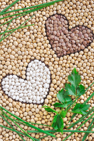 Lentils, soybeans, beans with herbs - pulse concept Stock photo © brozova