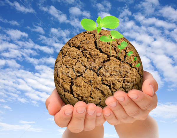 Plants growing out of parched planet in hands, evolution concept Stock photo © brozova