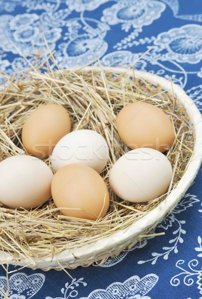 Vers boerderij eieren hooi tabel Blauw Stockfoto © brozova