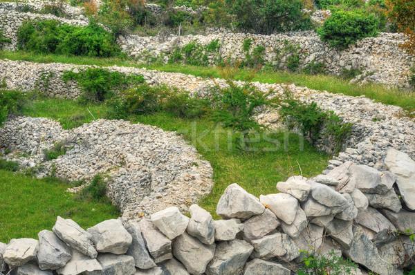Sheep pasture, drystone walls, Rudine, Krk island, Croatia Stock photo © brozova