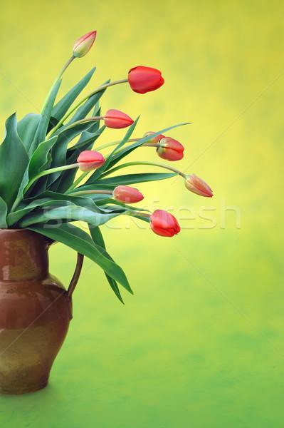 Rosso tulipani vecchio brocca colorato fiore Foto d'archivio © brozova