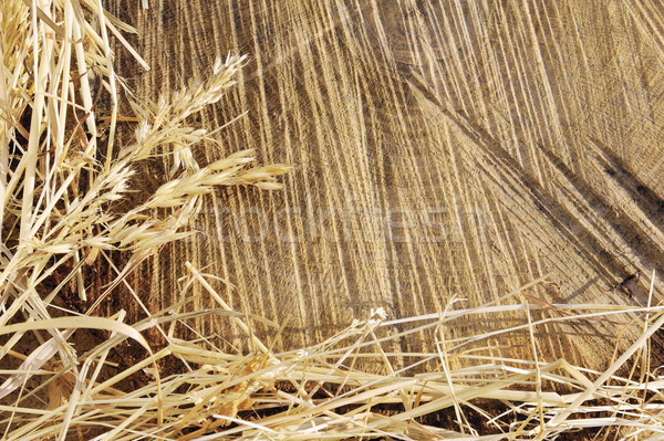 Detail of wooden cut texture and dry grass hay - frame Stock photo © brozova