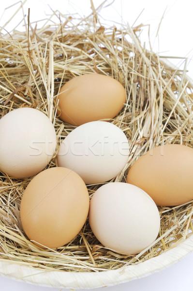 Fresco fazenda ovos natureza ovo fundo Foto stock © brozova