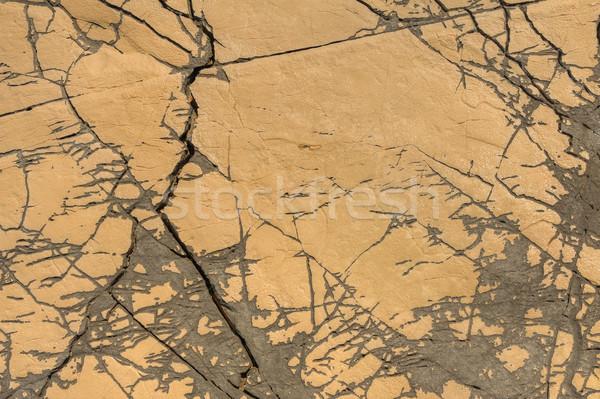 Pormenor calcário superfície norte Croácia textura Foto stock © brozova