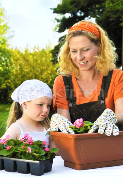 Young woman and little girl gardening in spring, planting flower seedlings, smiling mother and her h Stock photo © brozova