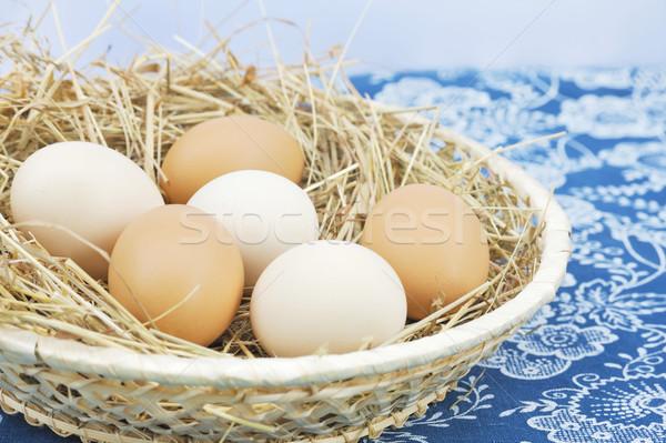 Stockfoto: Vers · boerderij · eieren · hooi · tabel · Blauw