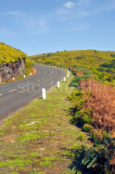 Drogowego plateau naturalnych madera wyspa Portugalia Zdjęcia stock © brozova