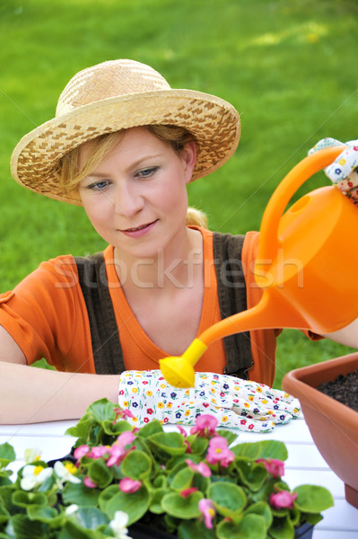 Young woman watering flowers Stock photo © brozova