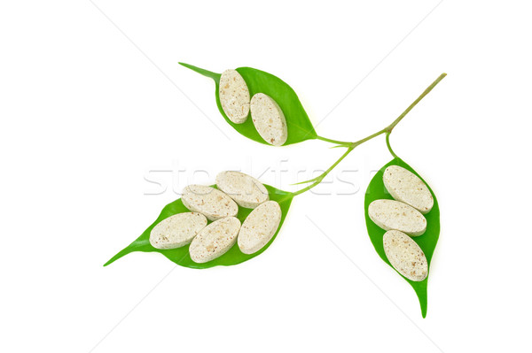 Natural supplement pills and fresh leaves – alternative medicine concept Stock photo © brozova