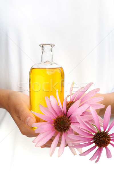 Hands of young woman holding essential oil and fresh coneflowers Stock photo © brozova