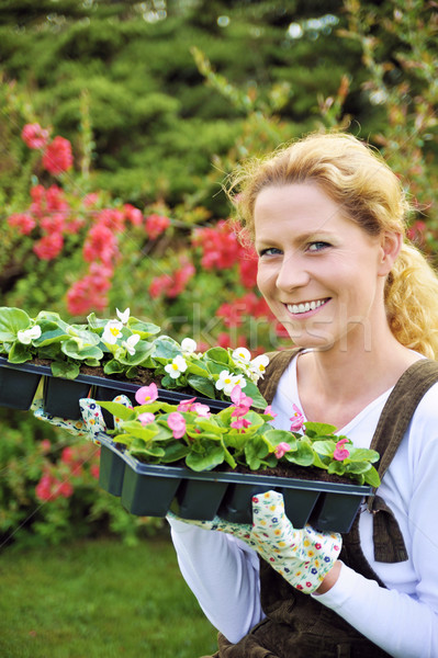 Young woman holding seedlings Stock photo © brozova