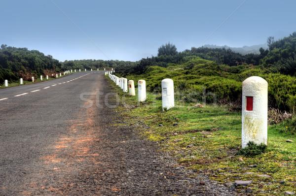 út fennsík természetes Madeira sziget Portugália Stock fotó © brozova