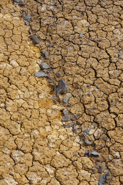 Cracked dry ground texture Stock photo © brozova