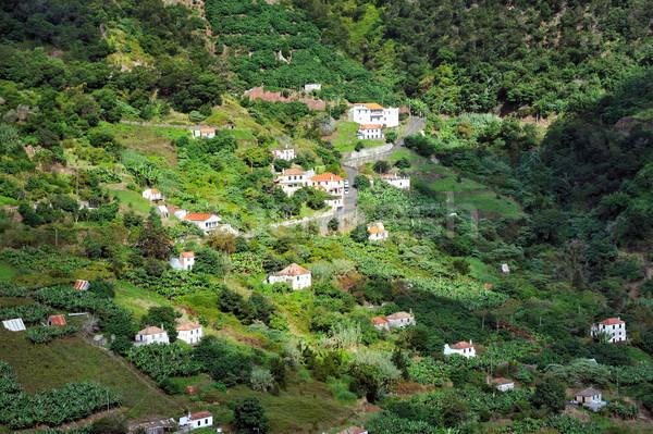 Village on the north coast of Madeira island  Stock photo © brozova