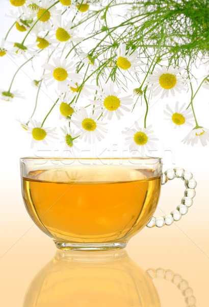 Cup of chamomile tea with fresh chamomilla flowers over colored background Stock photo © brozova