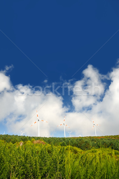 Eolic turbines  Stock photo © brozova