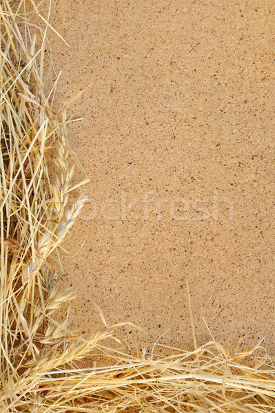 Detail of dry grass hay and OSB, oriented strand board  - frame Stock photo © brozova