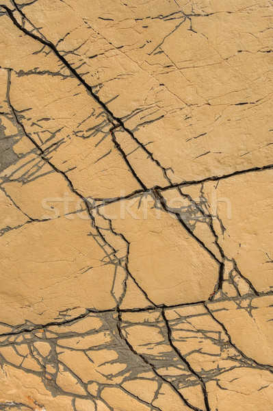 Detail of limestone surface, Vrboska, north of Croatia Stock photo © brozova