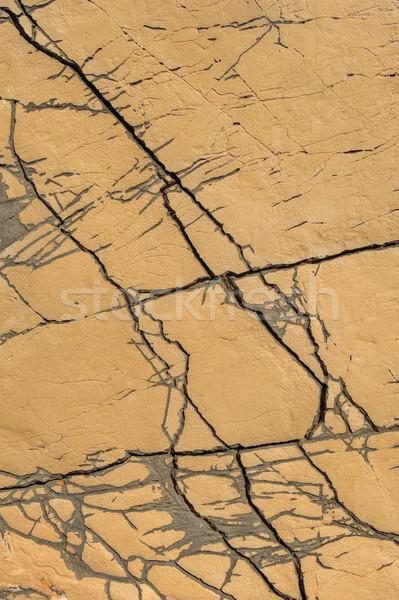 Detail kalksteen oppervlak noorden Kroatië textuur Stockfoto © brozova