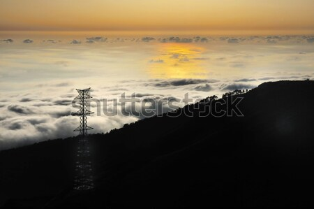 Electricity pylon over valley at sunset, Lomba das Torres,  Madeira island, Portugal Stock photo © brozova