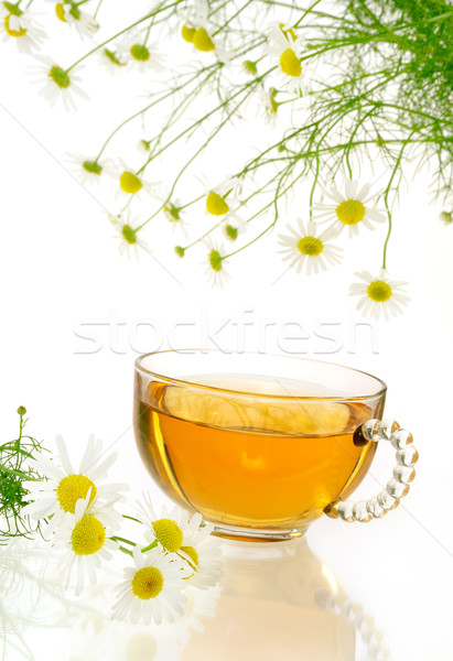 Cup of chamomile tea with fresh chamomilla flowers over white background Stock photo © brozova