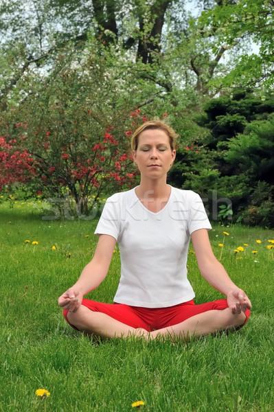 Stock photo: Young woman doing yoga - meditation