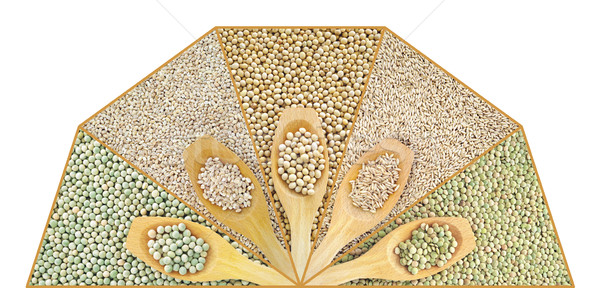 Collage of dry lentil, pea, soybean, oat and barleycorn Stock photo © brozova