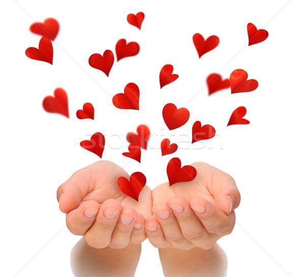 Battant coeurs mains jeune femme saint valentin heureux Photo stock © brozova