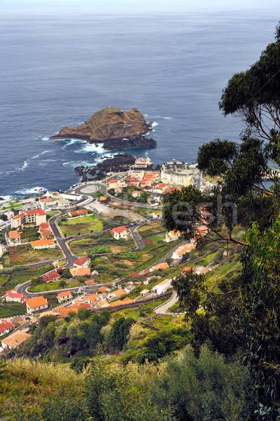észak Madeira sziget Portugália fa természet Stock fotó © brozova