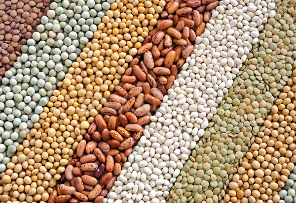 Mixture of dried lentils, peas, soybeans, beans  - background Stock photo © brozova