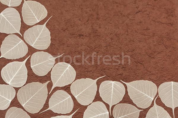 Skeletal leaves over brown handmade paper - frame Stock photo © brozova