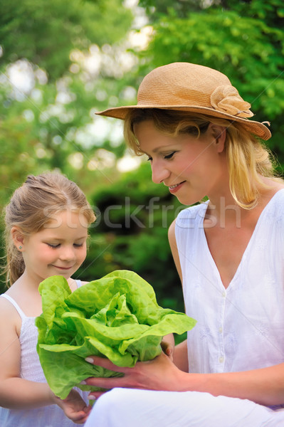 Stok fotoğraf: Genç · anne · kız · marul · kız · bahçe