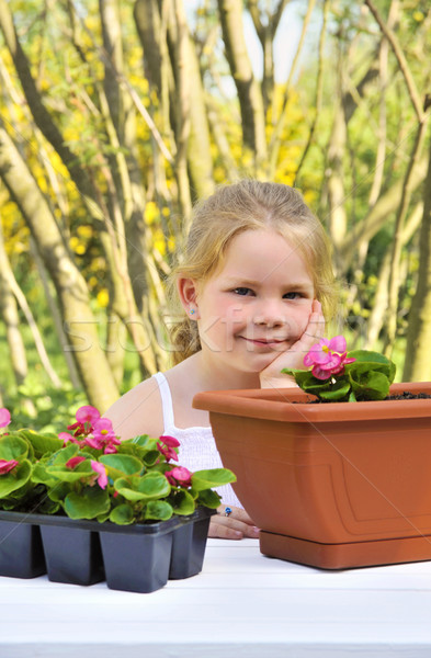 Little girl gardening, planting begonia seedlings in garden, happy child and flowers in pots Stock photo © brozova
