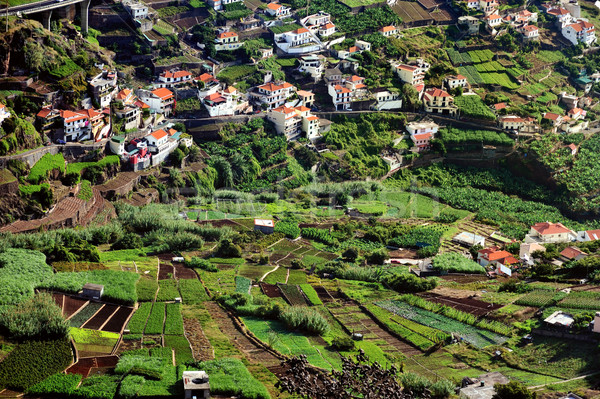Village on the south coast of Madeira island - Camara de Lobos - Portugal Stock photo © brozova