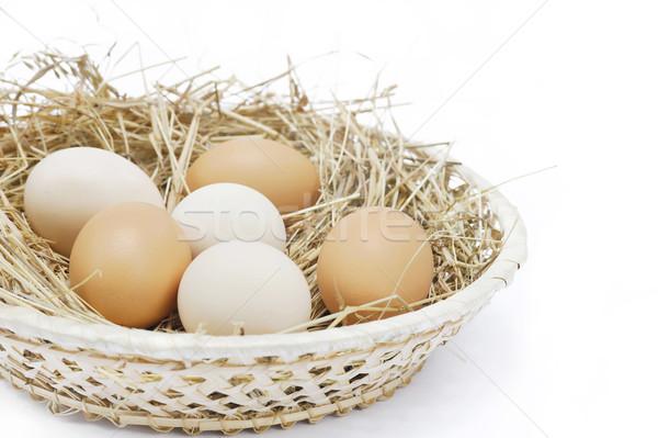 Vers boerderij eieren hooi geïsoleerd natuur Stockfoto © brozova